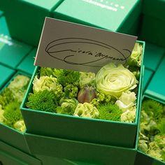 父の日には花を!「ニコライ・バーグマン」のフラワーボックスがが美しすぎる!   Anny アニー