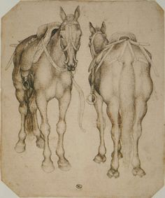 Ren Faire Geek: About Medieval Horses   Geeky!   Pinterest ...