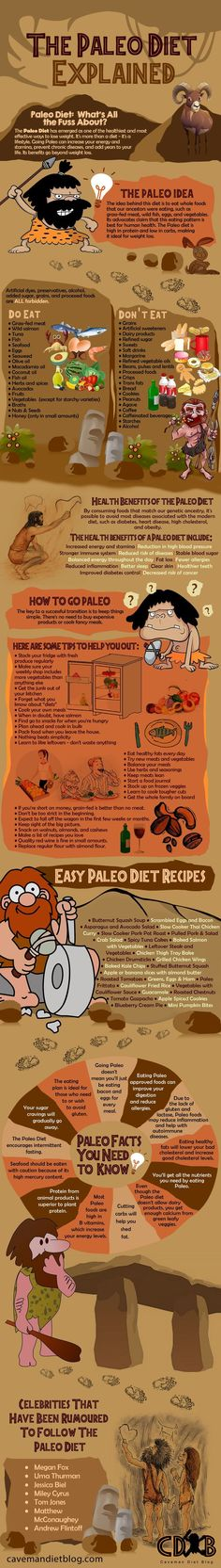 The Paleo Diet Explained - Fantastic infographic full of information about the P.The Paleo Diet Explained - Fantastic infographic full of information about the Paleo diet paleo diet for beginners Paleo On The Go, How To Eat Paleo, Going Paleo, Paleo Diet For Beginners, Beginner Paleo, Paleo Diet Plan, Diet Plans, Paleo Life, Nutrition