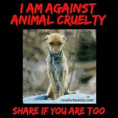 I am very sensitive about animal abuse because my dog used to be abused before we adopted him. It's not cool! Repost if you agree!