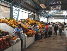 Ecuador is known for its many exotic fruits, top quality seafood and fish, and countless varieties of potatoes. Regional dishes tantalize the palate and may just surprise you in their presentation