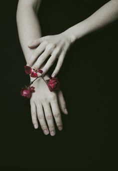 My Life | by Vivienne Bellini ( VivienneB )