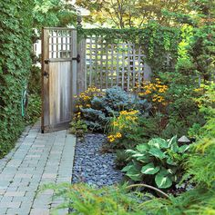 Low-growing shrubs, such as a dwarf globe blue spruce, provide a way to maintain a year-round, softscape barrier. A carefully chosen selection of plants and materials -- river rock, patterned pavers, variegated hostas, black-eyed Susans -- offers low-maintenance beauty.