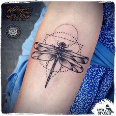 geometric dragonfly - Pesquisa Google