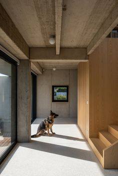 A Family Home in Slovakia Holds a Playground for Kids and Pets #dwell #hometours #moderndesign #slovakia