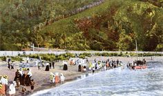Day's Bay, Wellington, N. Postcard by Fergusson Ltd. From the Gold Medal Series ~ W Printed in Germany. British Isles, New Zealand, Postcards, Dolores Park, Germany, Printed, Day, Gold, Photos