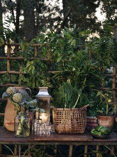 Misadventures in Gardening — gravityhome: The Perfect Garden by Lo Bjurulf. Outdoor Fun, Outdoor Spaces, Outdoor Living, Outdoor Decor, Outdoor Balcony, Fresco, Seaside Garden, Gravity Home, Outdoor Settings