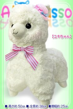 [Pre Order] Alpacasso Girly, Cubes & Rabuhatto Now Is Open