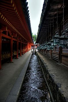 The Middle Waterway | Canal of flowing water between outer wall and inner courtyard of Kasuga Taisha shrine, Nara, Japan