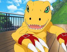 Digimon Data Squad: Collection 1