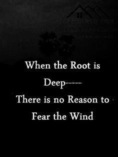 About roots and winds...