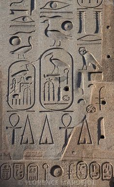 Some of the hieroglyphics that Clay discovered in the Price library (Bosch, p. Ancient Egypt Art, Ancient Aliens, Ancient History, Egyptian Symbols, Egyptian Art, Egyptians, Ancient Civilizations, Emerald Tablets Of Thoth, Ancient Egypt