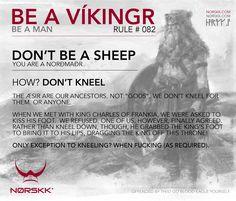 Be A Vikingr