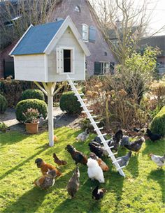 Very nice way to keep off the ground not to mention great yard decor. Think about stacking multi levels Easy Chicken Coop, Chicken Coup, Chicken Lady, Backyard Poultry, Backyard Chicken Coops, Chickens Backyard, Chickens And Roosters, Pet Chickens, Raising Chickens