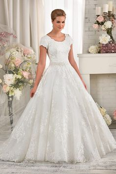 Princess Short Sleeves Modest Lace Wedding Dress