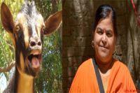 Hindi News Today,Hindi Samachar, Agra Samachar: भाजपा विधायक उषा ठाकुर के  विवादित बयान से देश की ...