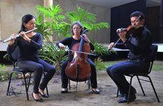 Pregopontocom Tudo: As Cameratas da Orquestra Sinfônica da Bahia promovem música de concerto em apresentações gratuitas...