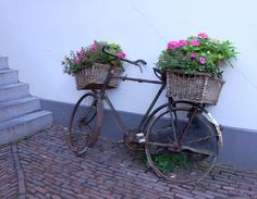 Zutphen, Fiets-bloemenmand. Old bicycles find a second life as a planter