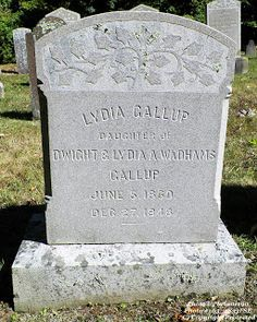Granite in My Blood: Tombstone Tuesday: Lydia GALLUP