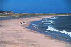Beautiful World, Beautiful Places, Road Trip, Voyager Loin, Atlantic Canada, Quebec City, Canada Travel, Dream Vacations, East Coast