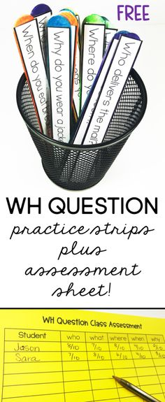 Wh- question practice strips and assessment sheet.