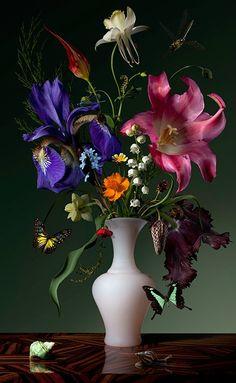 Bas Meeuws, Untitled ( C-Print on Dibond behind acrylic © Bas Meeuws Bas Meeuws (Dutch, born is. Flower Vases, Flower Art, Flower Arrangements, Floral Photography, Still Life Photography, Art Floral, Amazing Flowers, Beautiful Flowers, Still Life Flowers