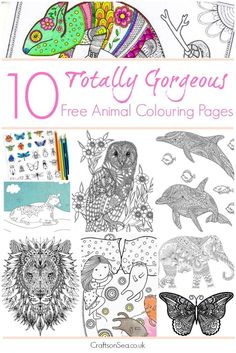 10 More Animal Adult Coloring Pages - Crafts on Sea