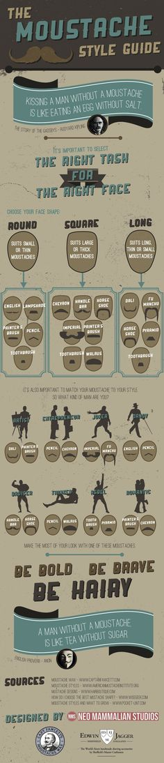 A guide to which Moustache you should grow! MoustacheInfographic