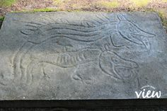 Petroglyph Park - one of many hidden gems of Vancouver Island