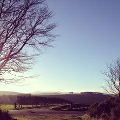 Bennachie Aberdeenshire