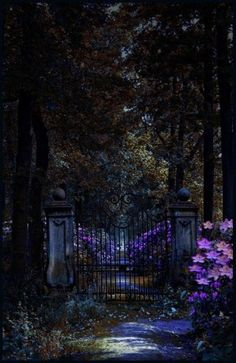 Midnight Garden Gate