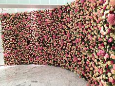 wall of flowers. like a dream. wedding, mariage, décoration, fleurs