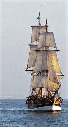 An 18th-Century Sailing Ship. The Lady Washington.