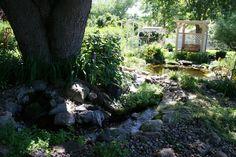 Shade loving plants thrive under a tree next to a stream.
