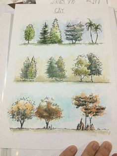Pin by kako painting on drawing in 2019 rysunki architektury, szkic, archit Landscape Architecture Drawing, Landscape Sketch, Landscape Drawings, Landscape Design, Art Drawings, Tree Sketches, Architectural Presentation, Urban Sketching, Designs To Draw