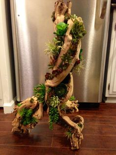 Faux Succulent driftwood by Simply Succulent