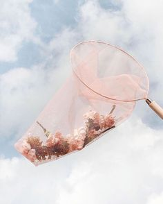 Late night idea that turned into a tulle butterfly net that turned into a photograph that turned into the She Was Caught print. Angel Aesthetic, Aesthetic Collage, Flower Aesthetic, Aesthetic Vintage, Aesthetic Photo, Aesthetic Pictures, Aesthetic Grunge, Aesthetic Fashion, Aesthetic Pastel Wallpaper