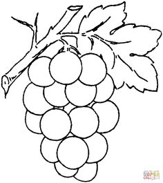 Grape 2 coloring page from Grapes category. Select from 24848 printable crafts of cartoons, nature, animals, Bible and many more. Fruit Coloring Pages, Coloring Pages For Boys, Free Printable Coloring Pages, Colouring Pages, Coloring Sheets, Free Coloring, Coloring Books, Kids Coloring, Adult Coloring