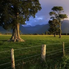 Mountains over green pastures