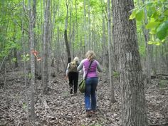 Hikers on the Uwharrie Hiking Trails