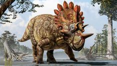 Nova espécie de dinossauro é descoberta no Canadá e está relacionada ao triceratops.