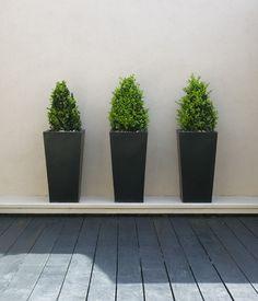 For front of house. Wall Morris Design Outdoor Room Gardenista Considered Design Award Winner