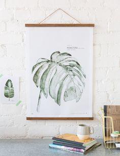 Urban Botanicals Monstera Print
