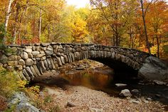 Beautiful shot of the old stone bridge on Beach Drive in Rock Creek Park on our hike today by dionhinchcliffe, via Flickr