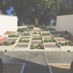 Modernist garden designed by gabriel guevrekian at the art for Jardin villa noailles hyeres
