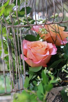 Floral Bird Cage - Location: Natures Point - flowers by: Visual Lyrics - photography by: April Skinner