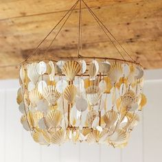 New Pottery Barn PB Teen Shell Beach Surf Mobile Resin Wood Natural Decoration Surf Room, Beach Room, Ocean Room, Wall Accessories, Decorative Accessories, Decorative Accents, Seashell Chandelier, Mobile Chandelier, Teen Wall Decor