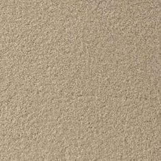 CASBAH, SILVER Texture Active Family™ Carpet - STAINMASTER®