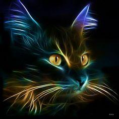 Fractal cat: