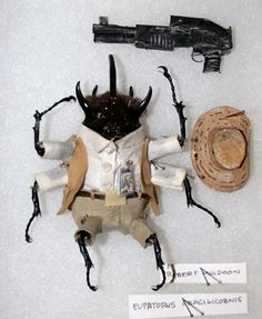 Robert Muldoon Dried beetles dressed as the cast of Jurassic Park for The JP Show (Just People)curated byBrandon Bird Dec 2011